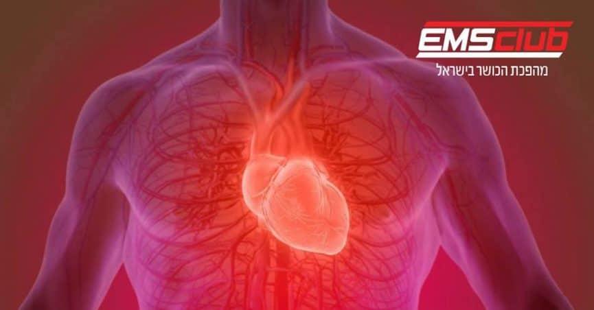 שריר הלב