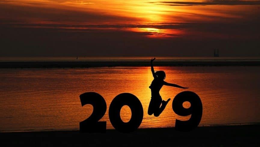 יעדים לשנת 2019